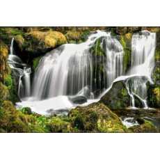 Fototapeta Wodospad w Lesie 400x280 /166815492